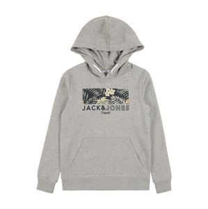 Jack & Jones Junior Hoodie 'Jortropic'  szürke melír