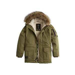 HOLLISTER Parka 'XM19-AW PARKA BLACK AND OLIVE 2CC'  olíva