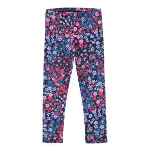 OshKosh Leggings  kék / vegyes színek